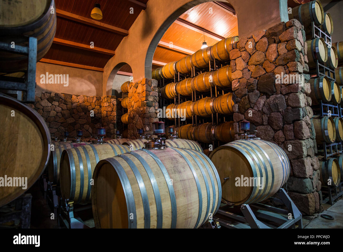 View of wine casks in wine cellar, Mendoza, Argentina - Stock Image