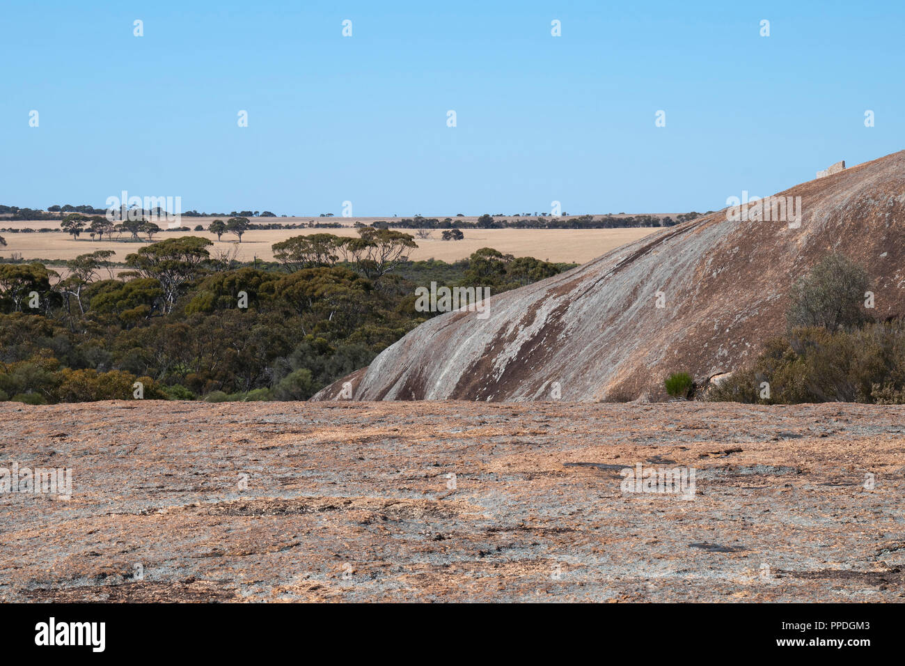 Hyden Australia, Panorama from top of wave rock, with wheat fields in background - Stock Image