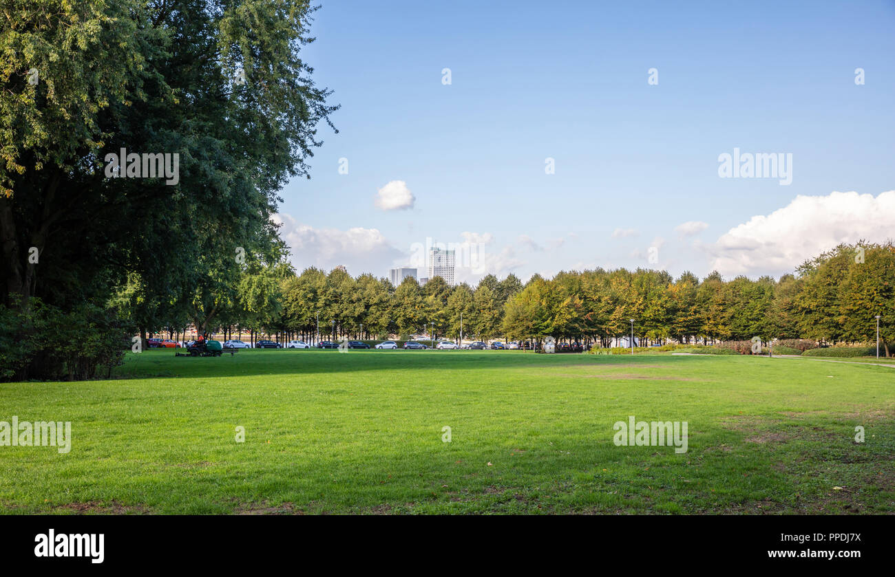 Green Meadow In A City Park On A Sunny Day With Blue Sky Background Wallpaper Stock Photo Alamy