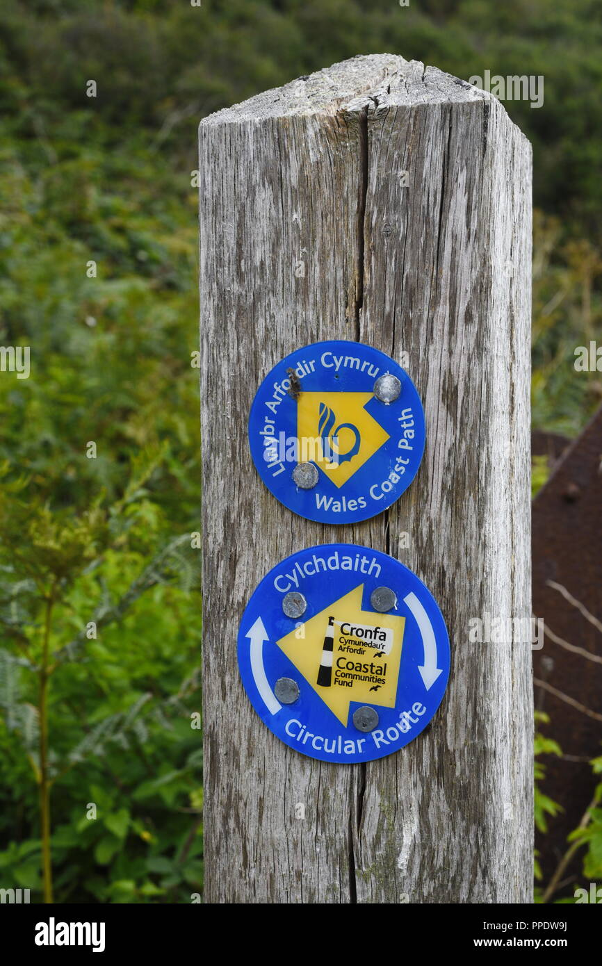Wooden direction post way marker showing direction for Wales Coastal Path - Stock Image