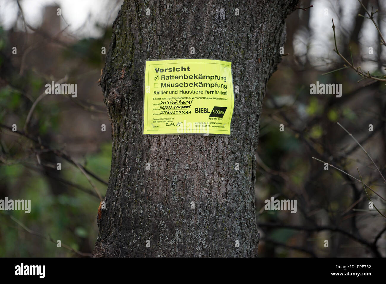 Warning sign 'Caution Rat Control' in the green area in the Luisenstrasse at Koenigsplatz. - Stock Image