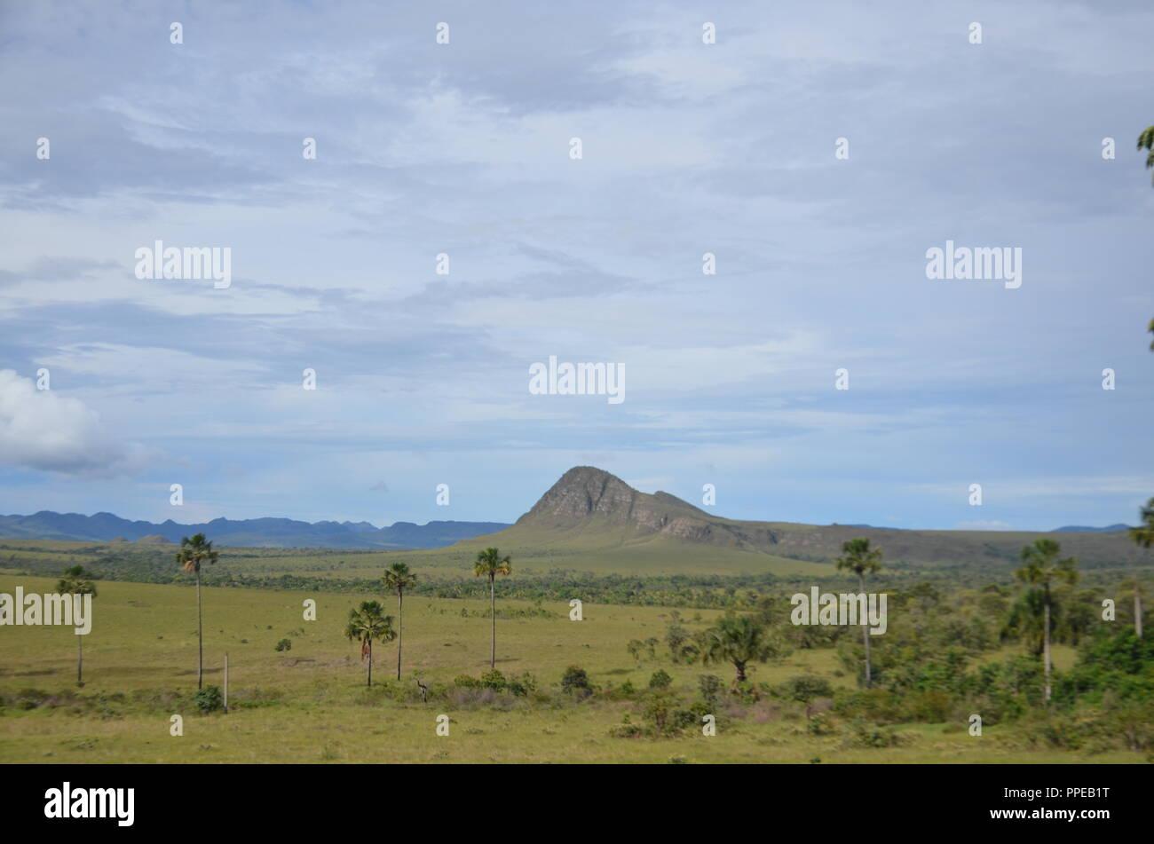 Fotografias diversas; Natureza, vida selvagem, prédios históricos, paisagens e culturas da America do  Sul. - Stock Image