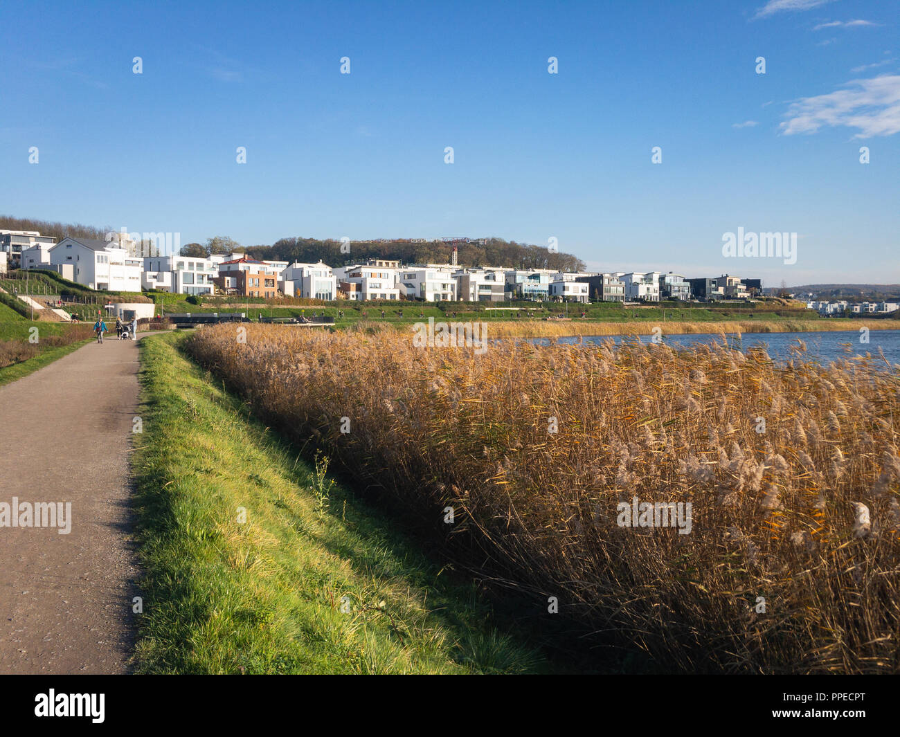 Residential houses at Phoenixsee in the German city of Dortmund on a sunny afternoon in autumn - Stock Image