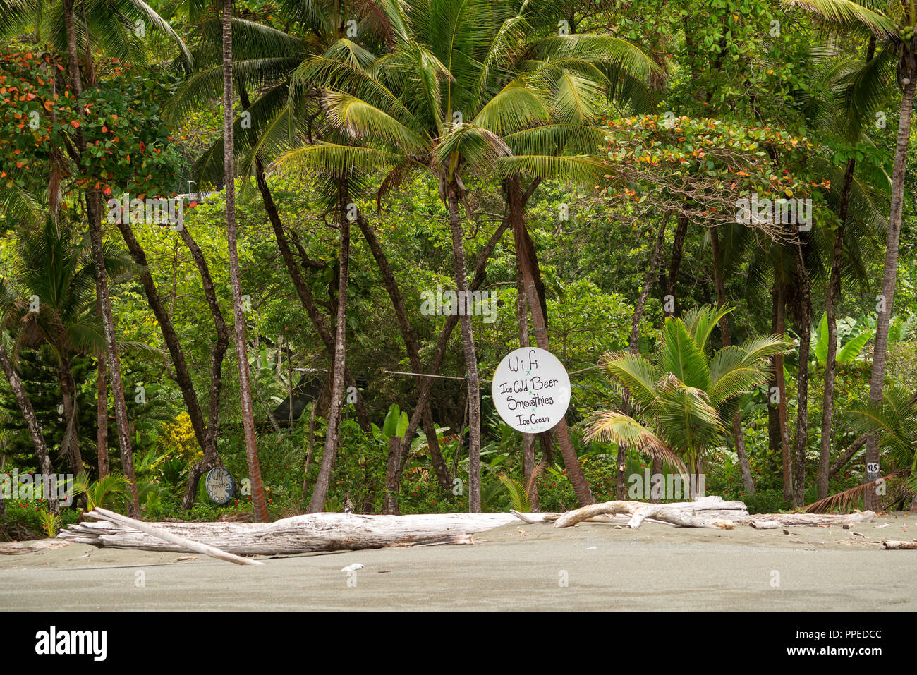 Beach scenes, Corcovado National Park, Osa Peninsula, Costa Rica - Stock Image