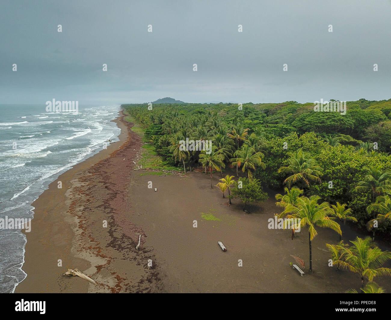 Beach, Tortuguero National Park, Costa Rica - Stock Image