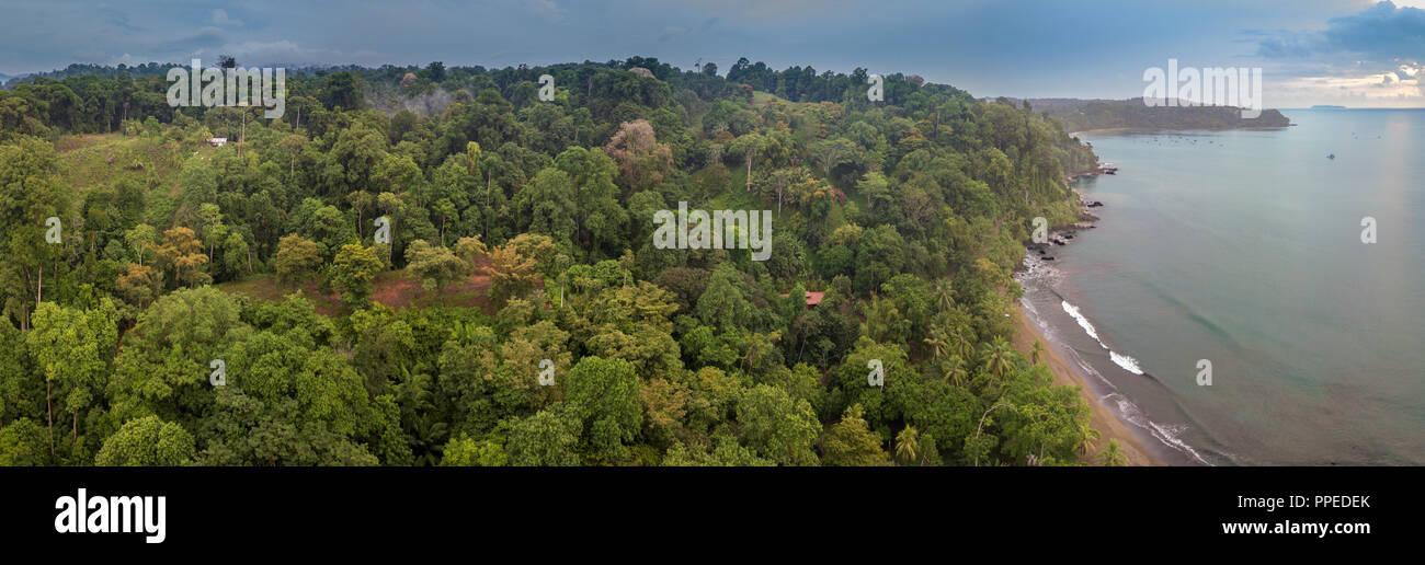 Top view -Jungle, Drake Bay, Osa Peninsula, Costa Rica - Stock Image