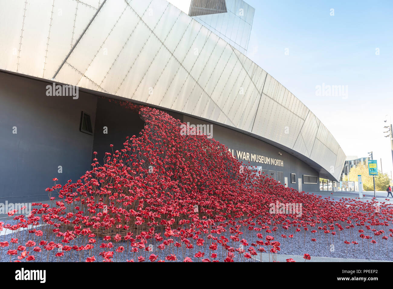 The iconic red poppy sculpture Wave by artist Paul Cummins and designer Tom Piper outside the IWM North. - Stock Image