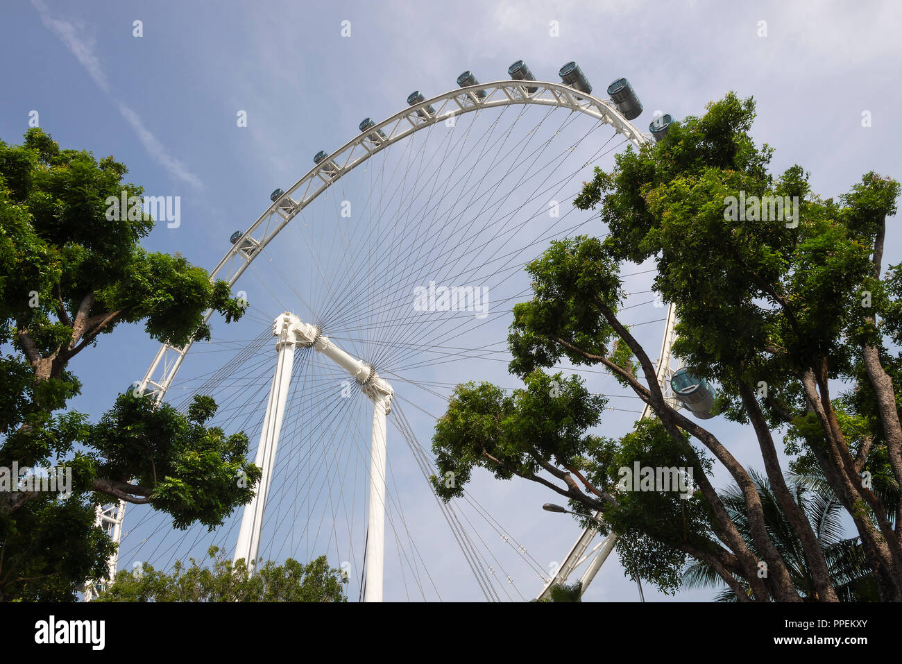 The Singapore Flyer Giant Big Wheel Tourist Attraction by Marina Bay in Downtown Singapore Republic of Singapore Asia - Stock Image