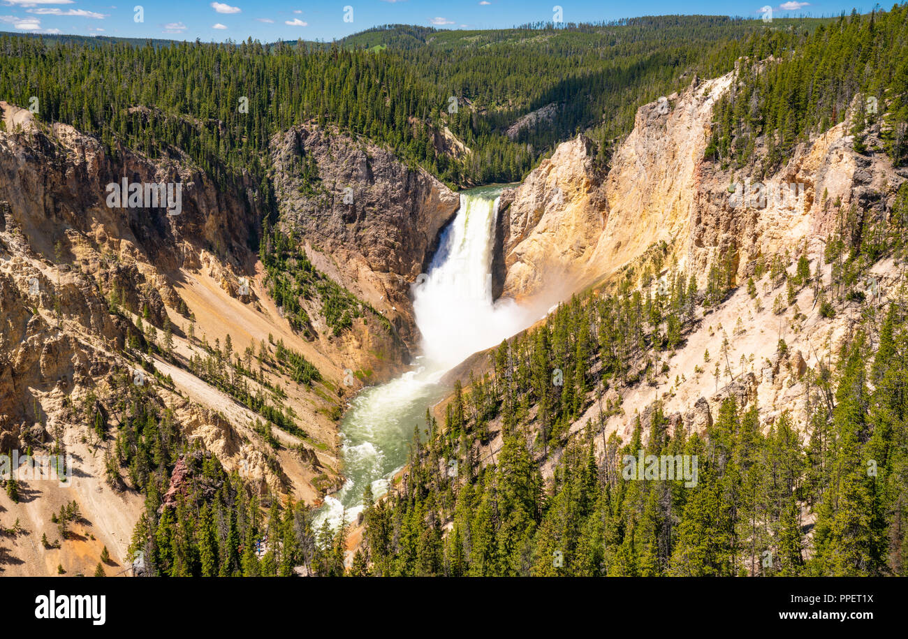 Lower Falls of Yellowstone Canyon in Yellowstone National Park, Wyoming - Stock Image