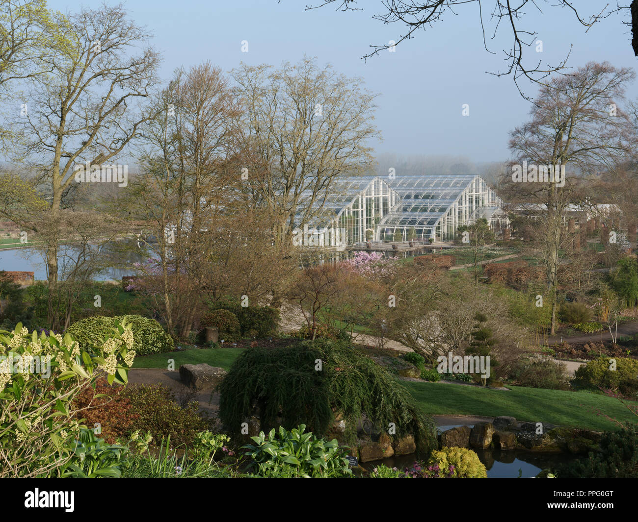 Early spring in the garden. View of the large glasshouse with its tropical and subtropical plants, of RHS Wisley with the gardens in early spring. - Stock Image