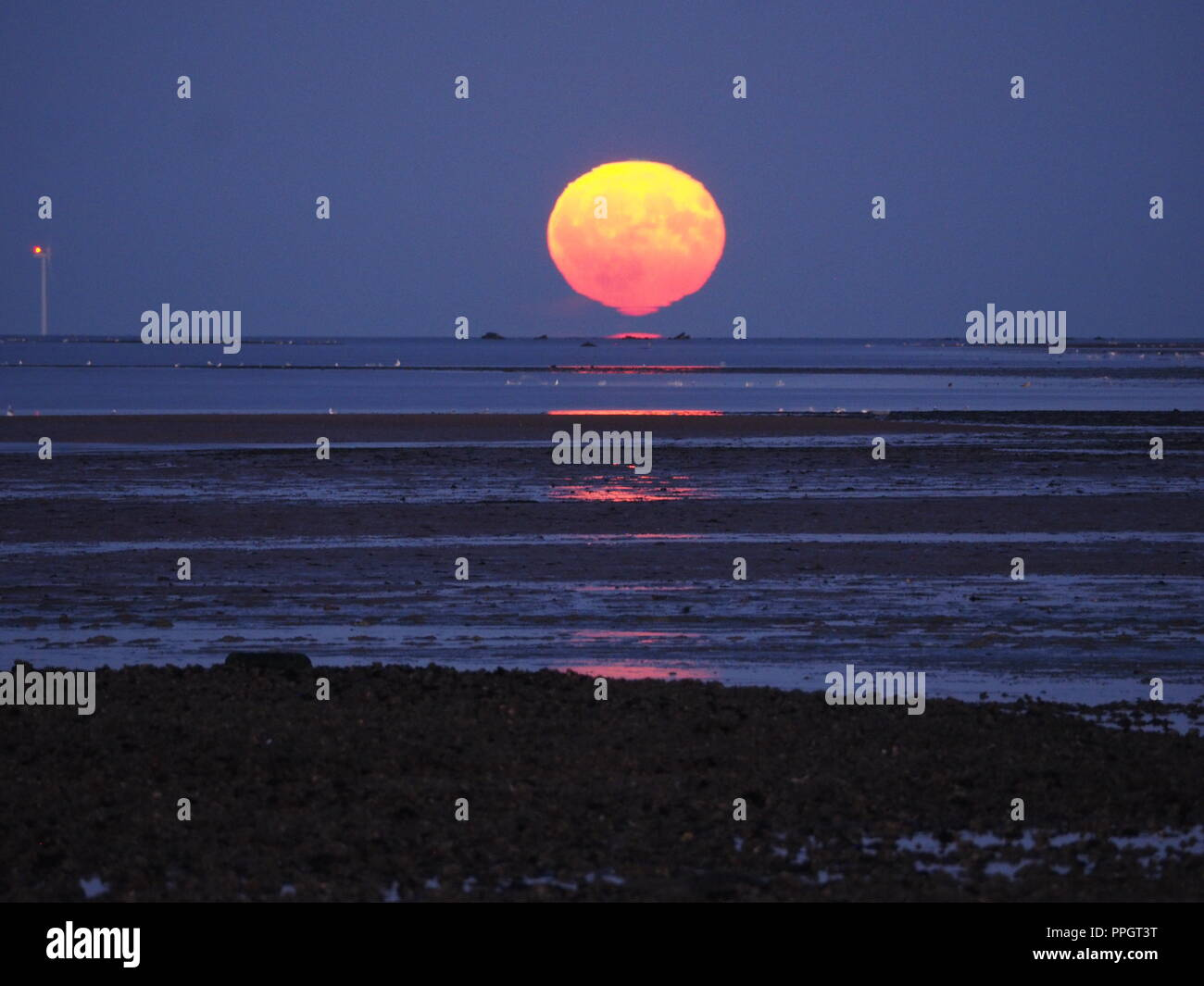 Sheerness, Kent, UK. 25th Sep, 2018. UK Weather: this evening's full Harvest moon rising next to the Kentish Flats windfarm in Sheerness, Kent with the rare 'Omega' effect causing a mirage to appear just above the horizon in the shape of the greek symbol.  Credit: James Bell/Alamy Live News - Stock Image