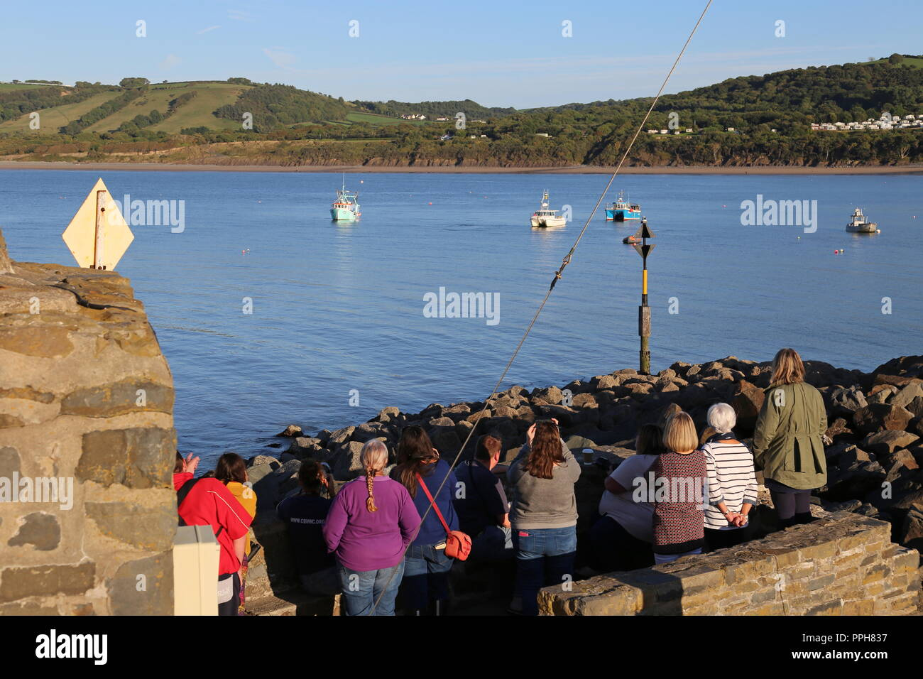 Dolphin watching from New Quay Harbour, Cardigan Bay, Ceredigion, Wales, Great Britain, United Kingdom, UK, Europe - Stock Image