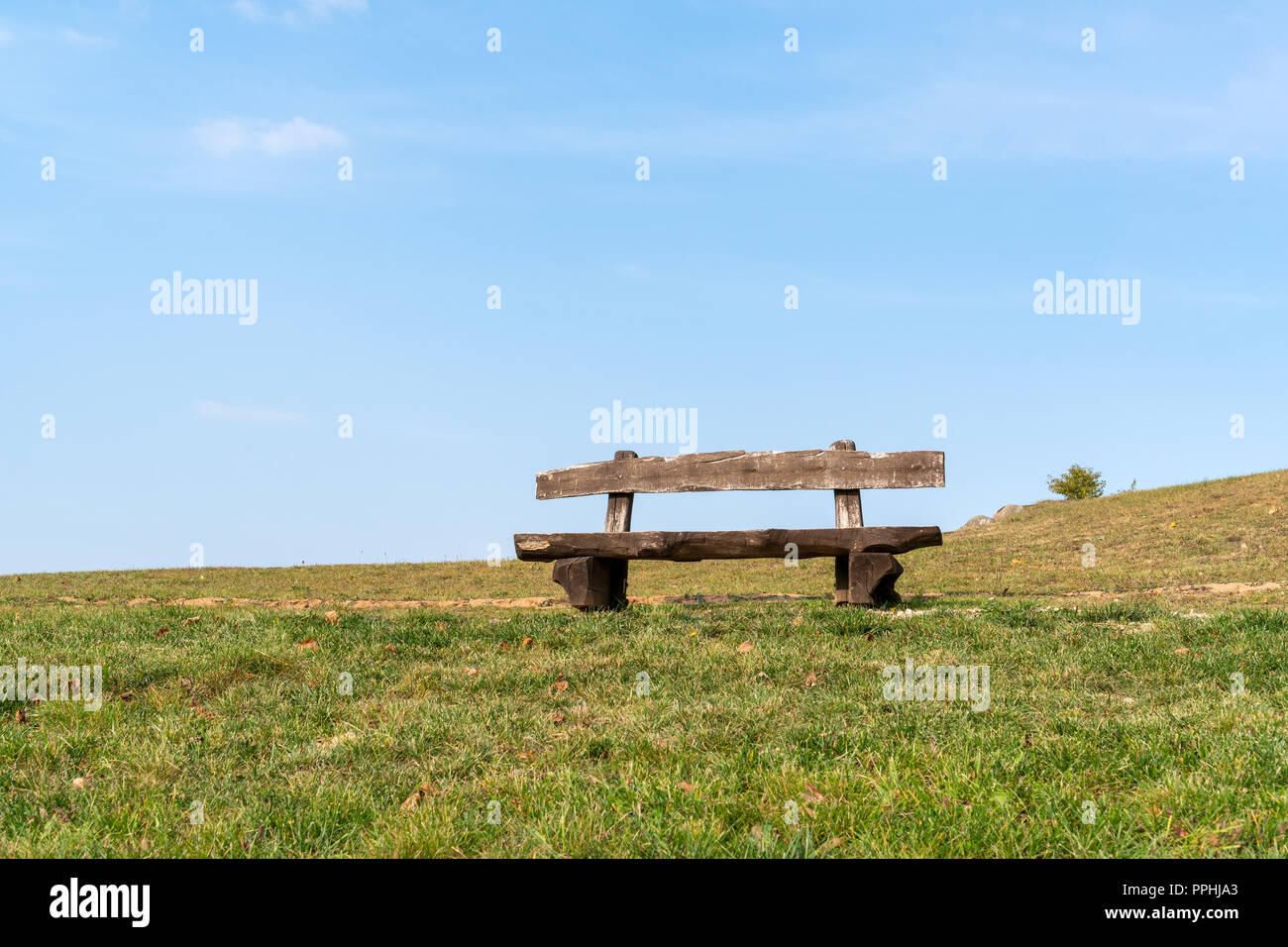 Miraculous The Empty Wood Bench In The Public Park Under Blue Sky Stock Ibusinesslaw Wood Chair Design Ideas Ibusinesslaworg