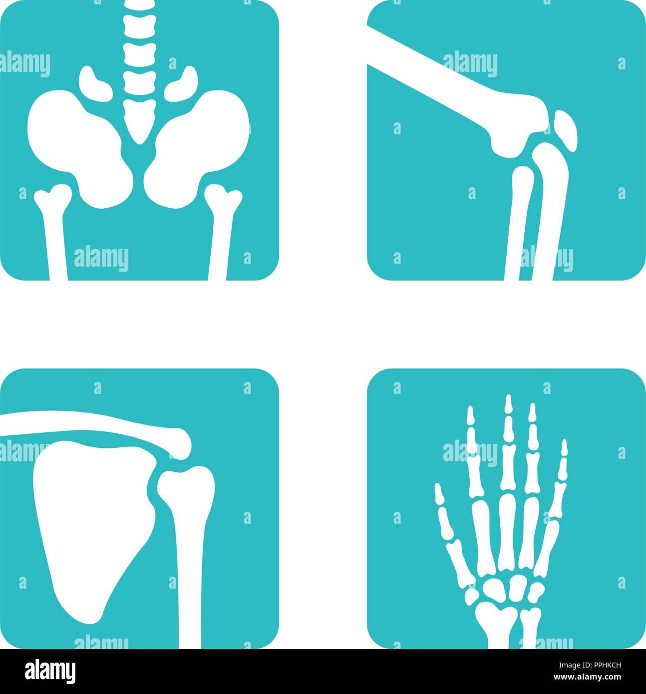 Set of orthopedic and skeleton bones symbols. Vector pelvis, knees, scapula, hand icons. Medical app buttons - Stock Image
