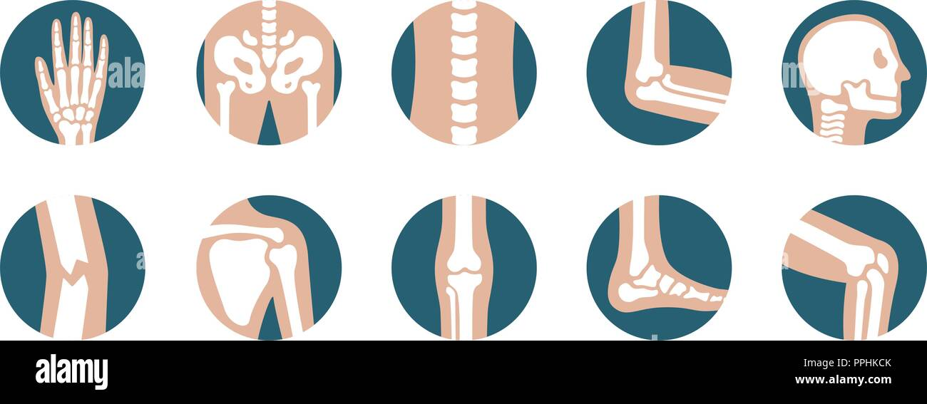 Set of human joints and bones. Vector knee, leg, pelvis, scapula, skull, elbow, foot and hand icons. Orthopedic and skeleton symbols on white background - Stock Image