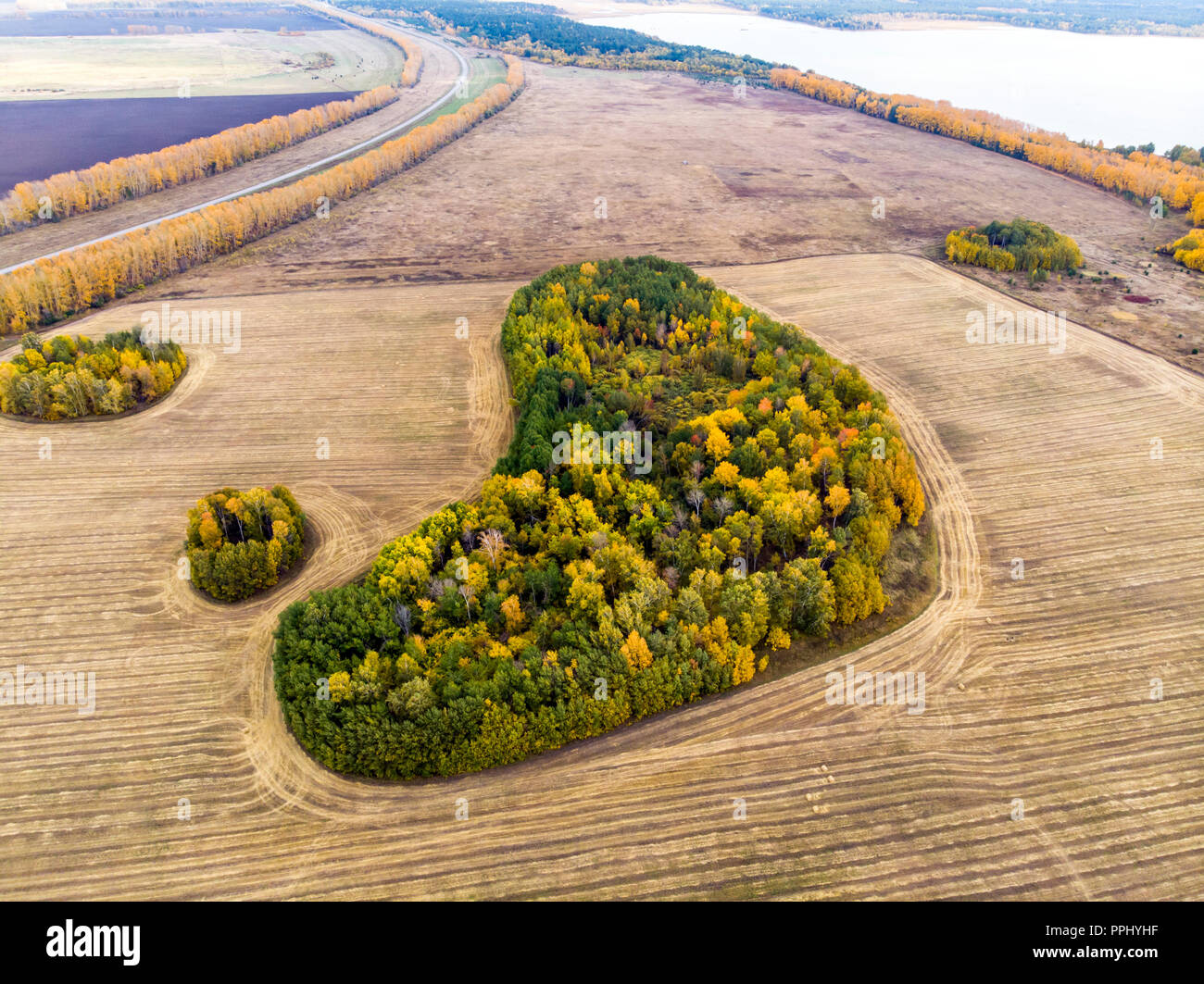 A view from above of autumn forest forests and a farm field in the forest. Harvesting on a wheat field. Russia Altai territory. Top view small Islands of forest in the field. Stock Photo