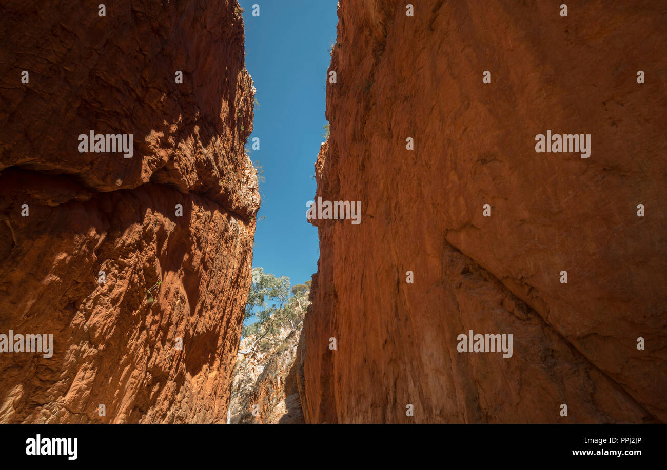 west macdonnell ranges, standley chasm, gorge, near alice springs, Nothern Territory, Australia Stock Photo