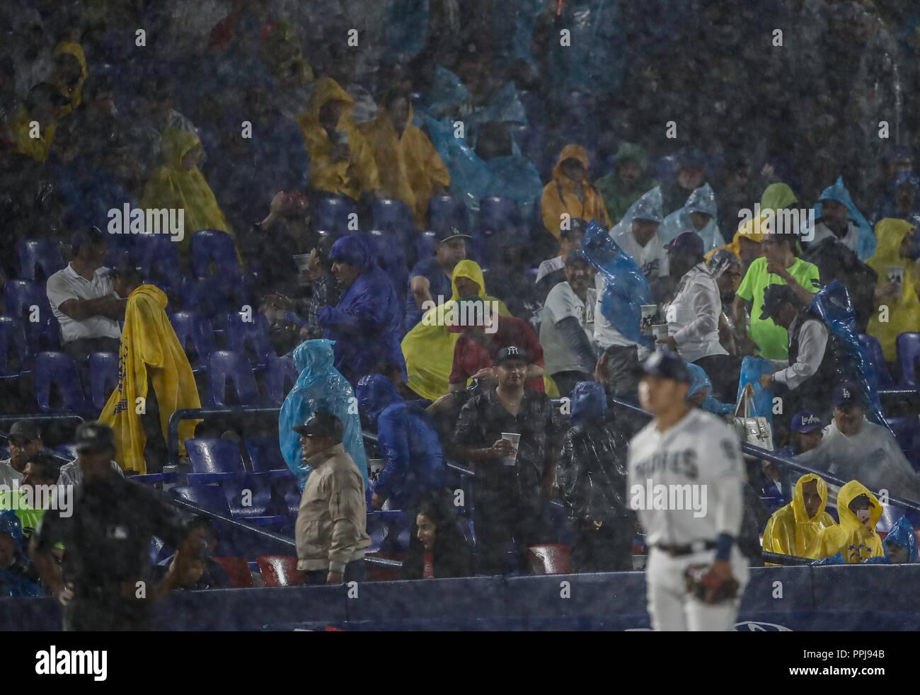 Christian Villanueva de San Diego , durante el partido de beisbol de los Dodgers de Los Angeles contra Padres de San Diego, durante el primer juego de - Stock Image