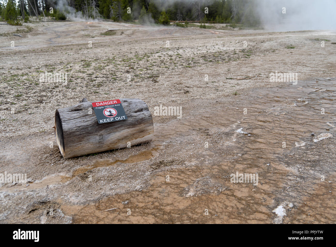 A log with a warning sign warns tourists and visitors to stay out of the thermal areas in Yellowstone National Park. Hot Springs reach high temperatur - Stock Image