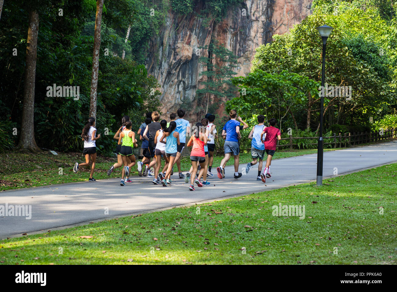 A group of runners consists of males and females running together on a park path - Stock Image