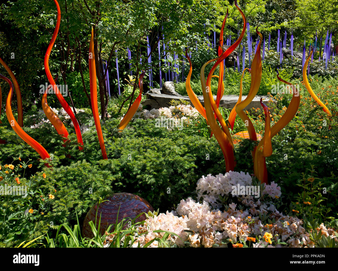 Dale Chihuly, hand blown glass, Seattle, Washington State, USA Stock Photo