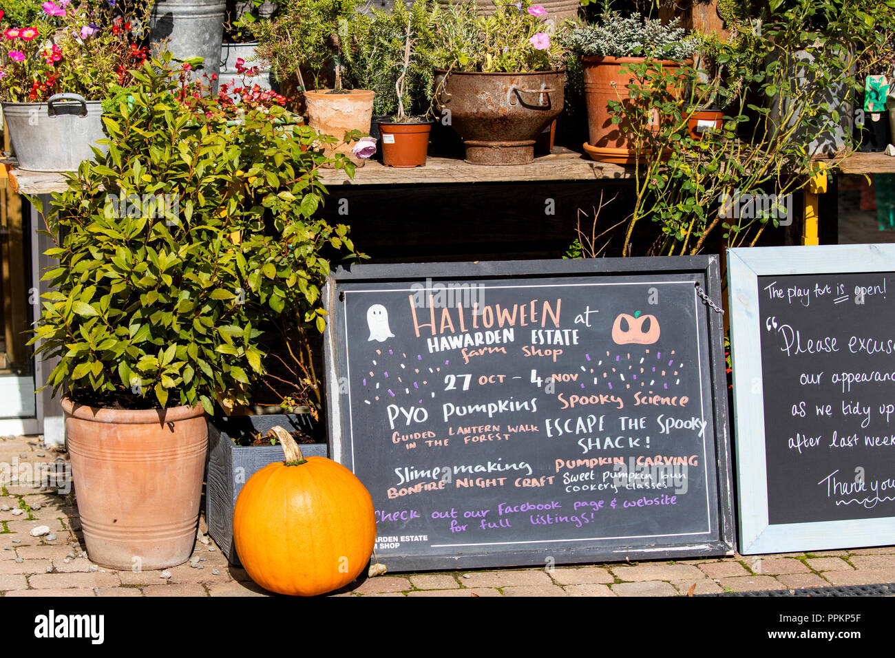 Shop signs and produce including pumpkins at the entrance to Harwarden Estate Farm Shop, Flintshire, Wales Stock Photo