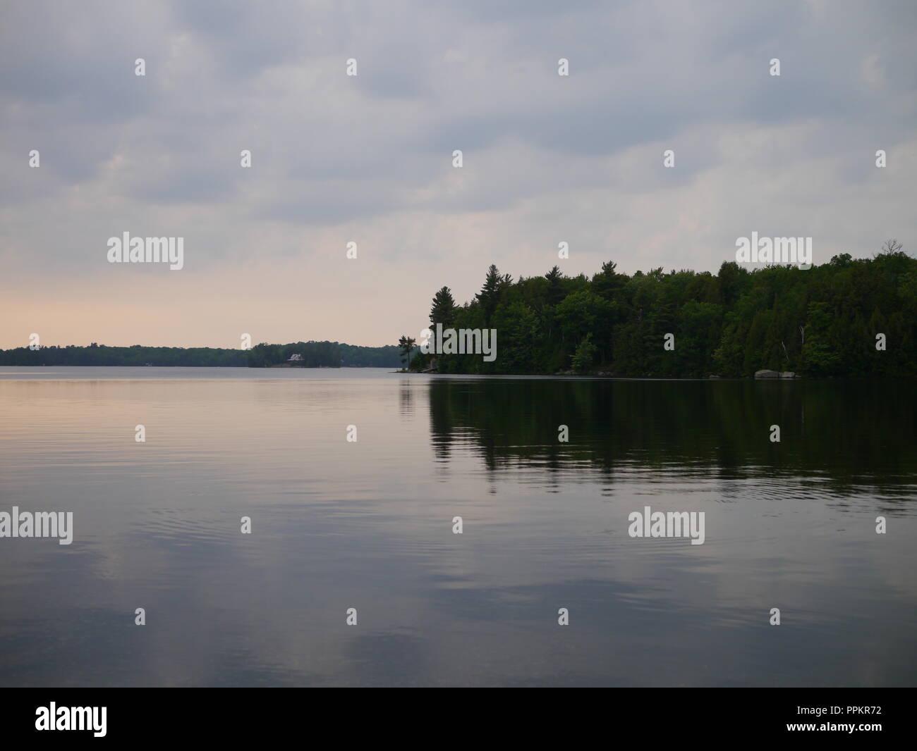 Woodland Reflection on the Lake - Stock Image