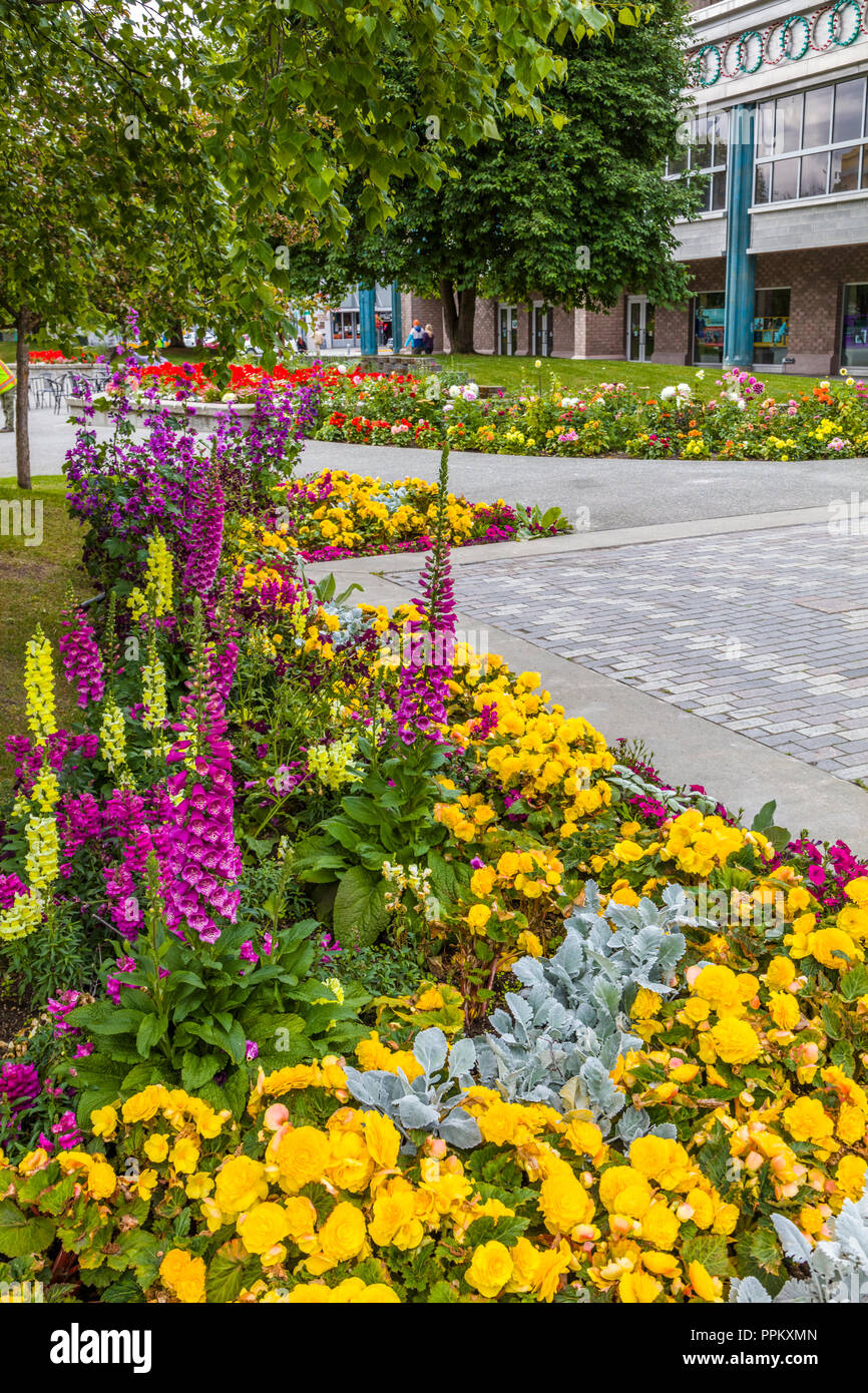 Flower gardens in Town Square Park in downtown Anchorage Alaska - Stock Image