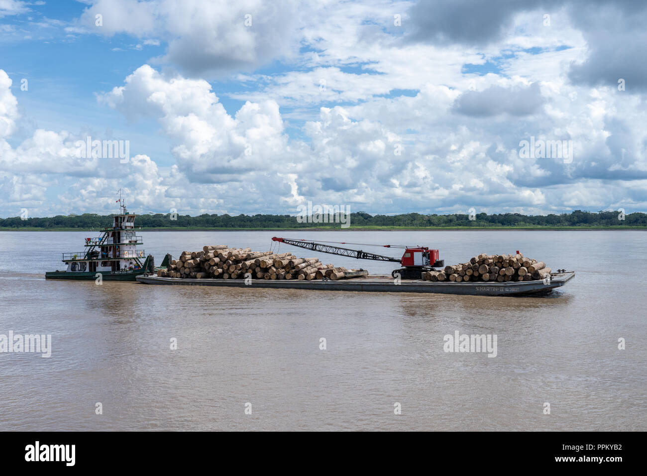 Pacaya Samiria Reserve, Peru, South America.  Towboat or pushboat pushing a barge load of trees to market on the Ucayali River. - Stock Image
