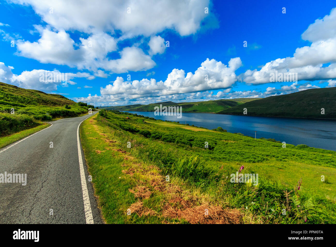 Road Leading Nowhere by a Lake Under a Beautiful Clear Sky With Grass Swaying In The Wind - Stock Image