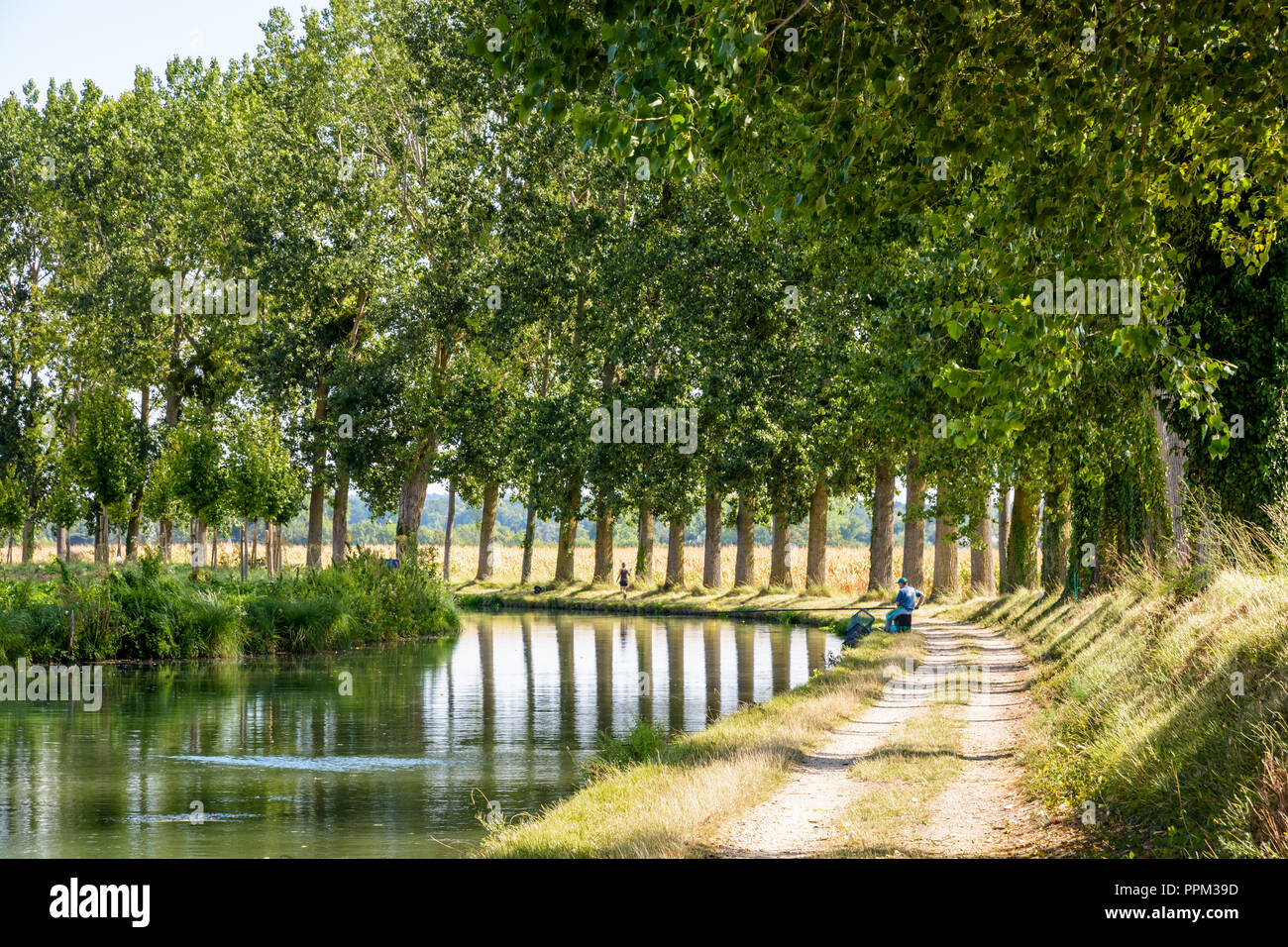 Typical bucolic scene on the tree lined towpath alongside the canal of the river Marne in France with a man fishing in the still waters. - Stock Image