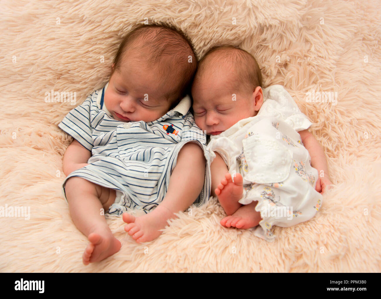 Horizontal portrait of premature twin newborn babies. Stock Photo