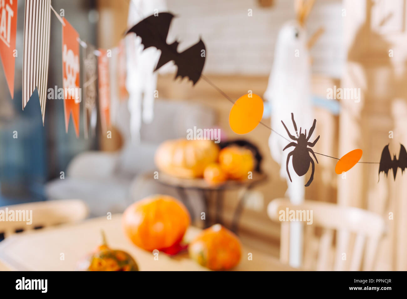 Little bats and spiders made out of paper used as decorations for