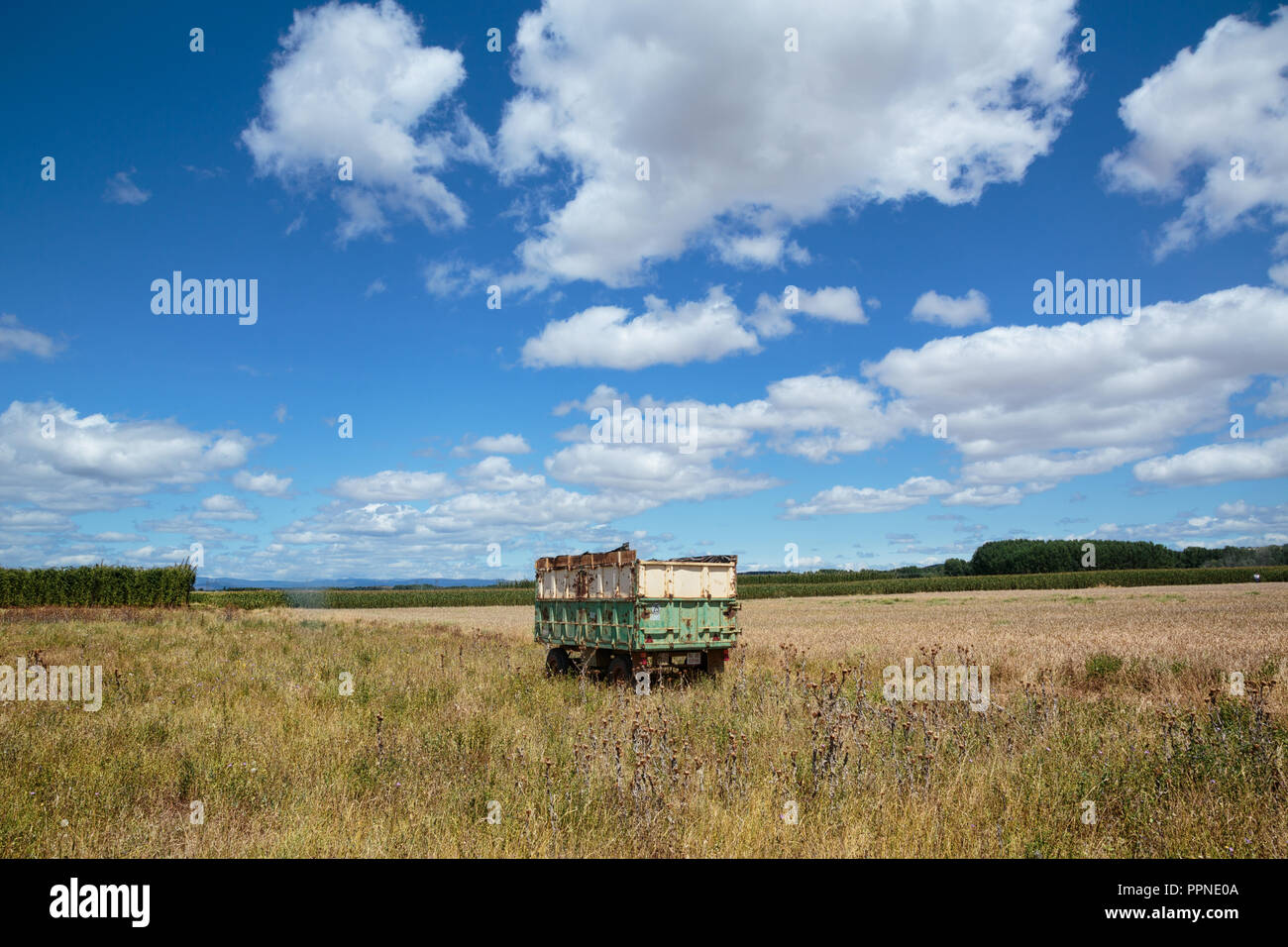 Camino de Santiago (Spain) - The way of St.James, in the spanish meseta Stock Photo