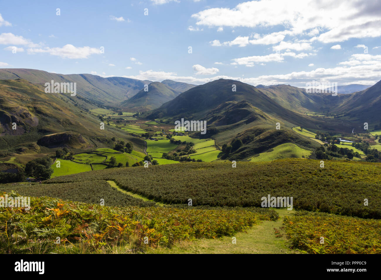 View over green fields from Hallin Fell to Martindale and Boardale valleys with Beda Fell in centre. Lake District, England. Stock Photo