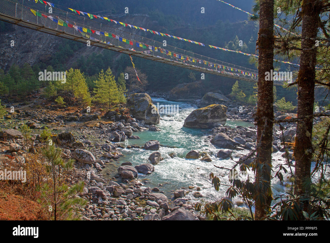 Suspension bridge and prayer flags over the Dudh Kosi river - Stock Image
