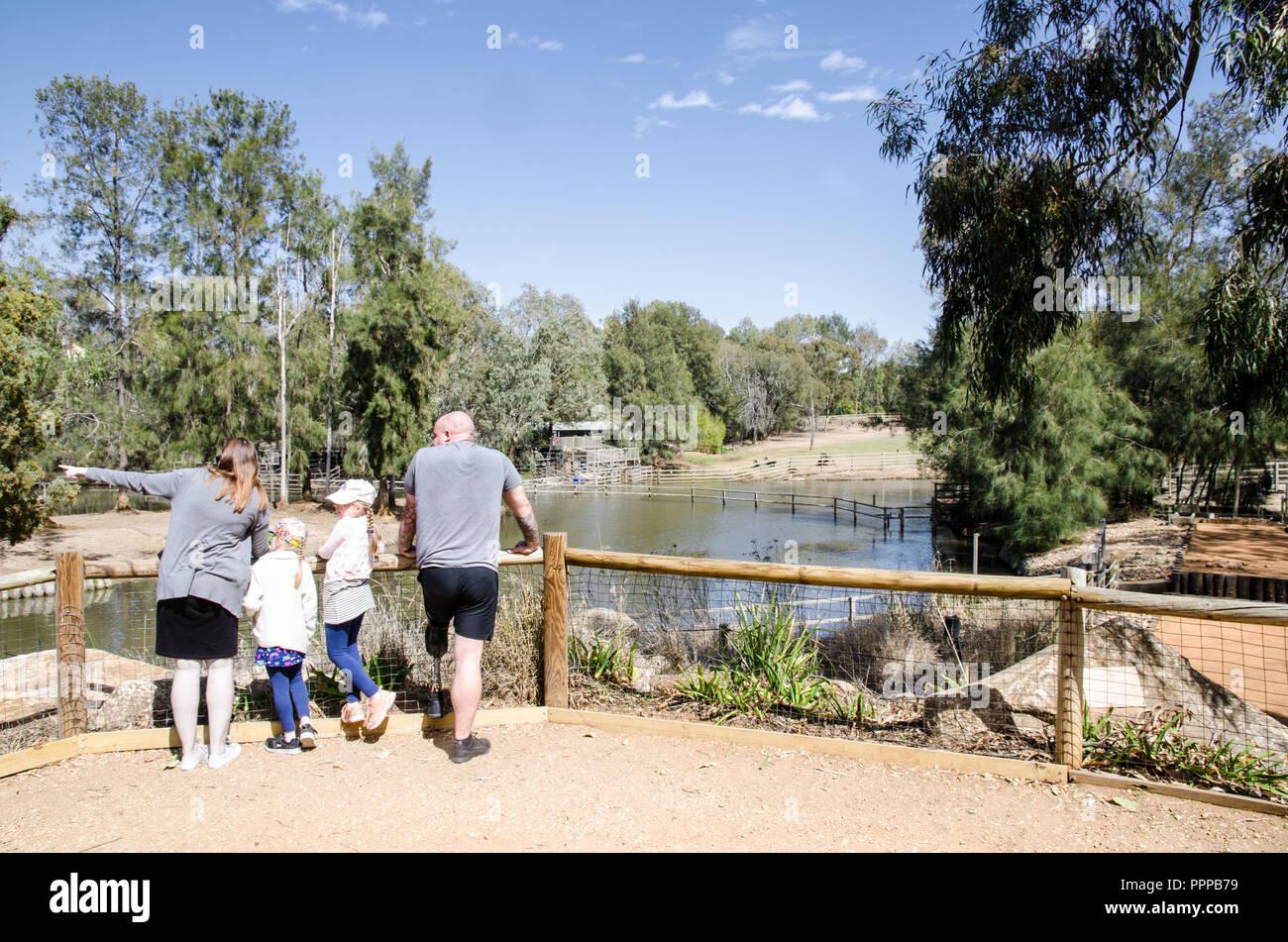 A family looking for a hippopotamus at Dubbo Zoo,NSW Australia. Stock Photo