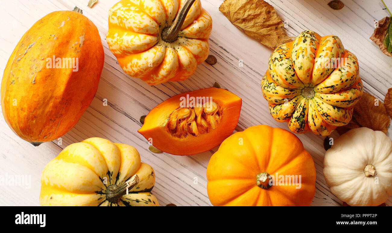 Orange pumpkins laid in disorder - Stock Image