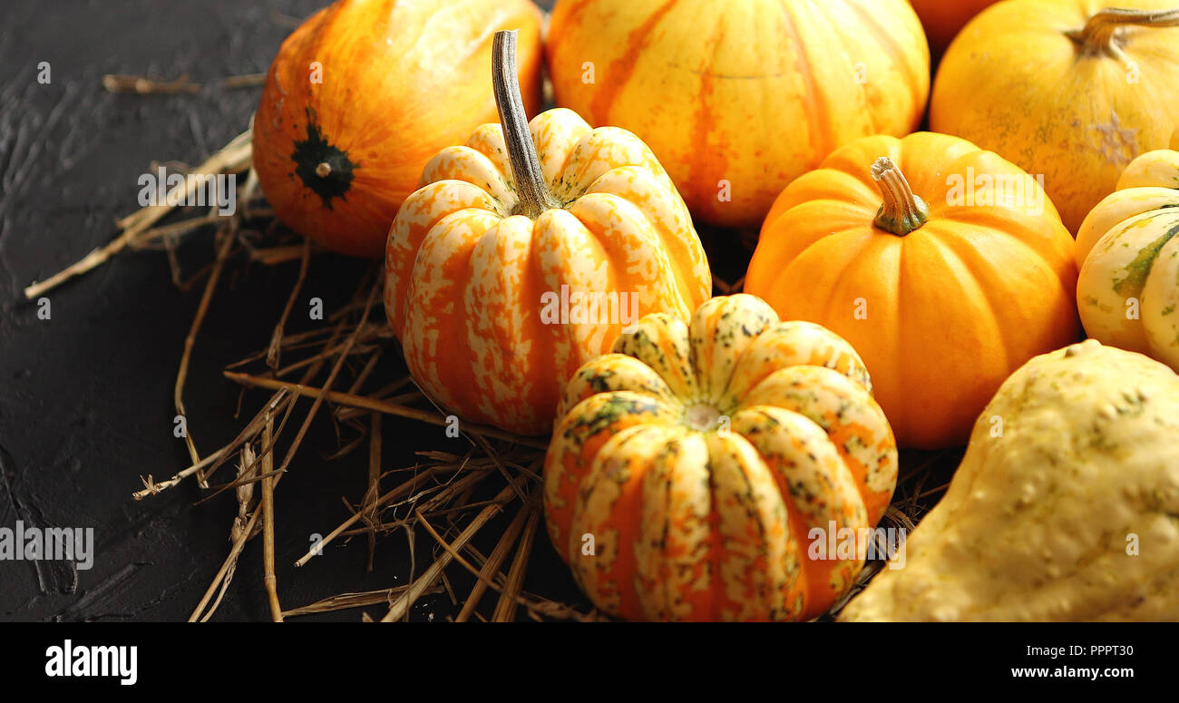 Heap of pumpkins with hay Stock Photo
