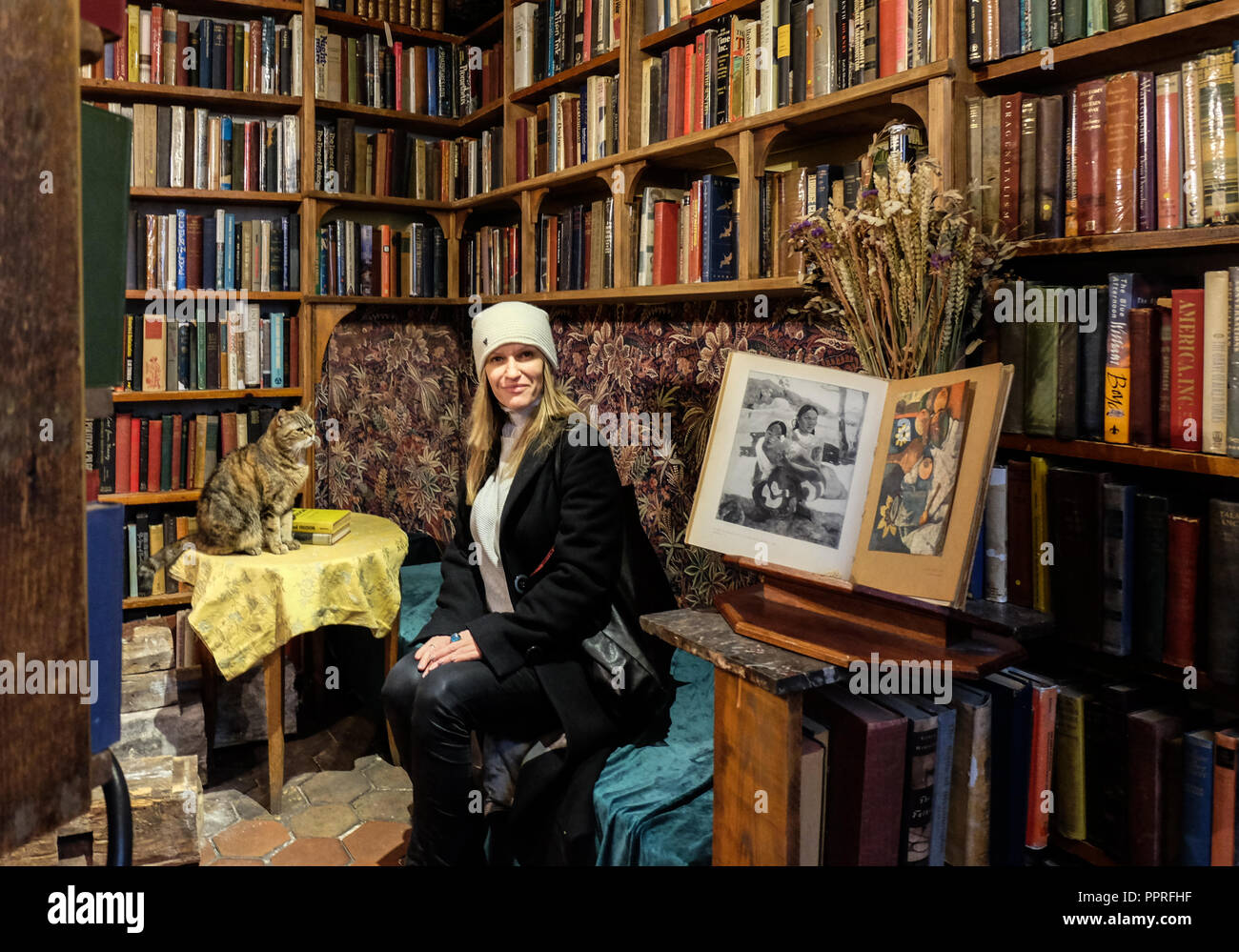Paris, France - November 2017: Woman and cat sitting in  front of shelves full of old books. Shakespeare & Company, Paris, France. - Stock Image