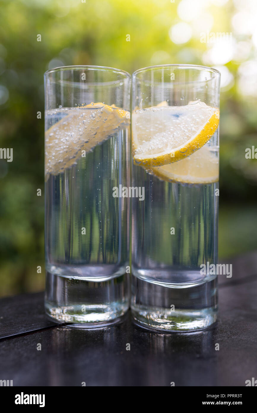 Sparkling gin tonic in long drink glasses in the garden on a nice summer day. - Stock Image