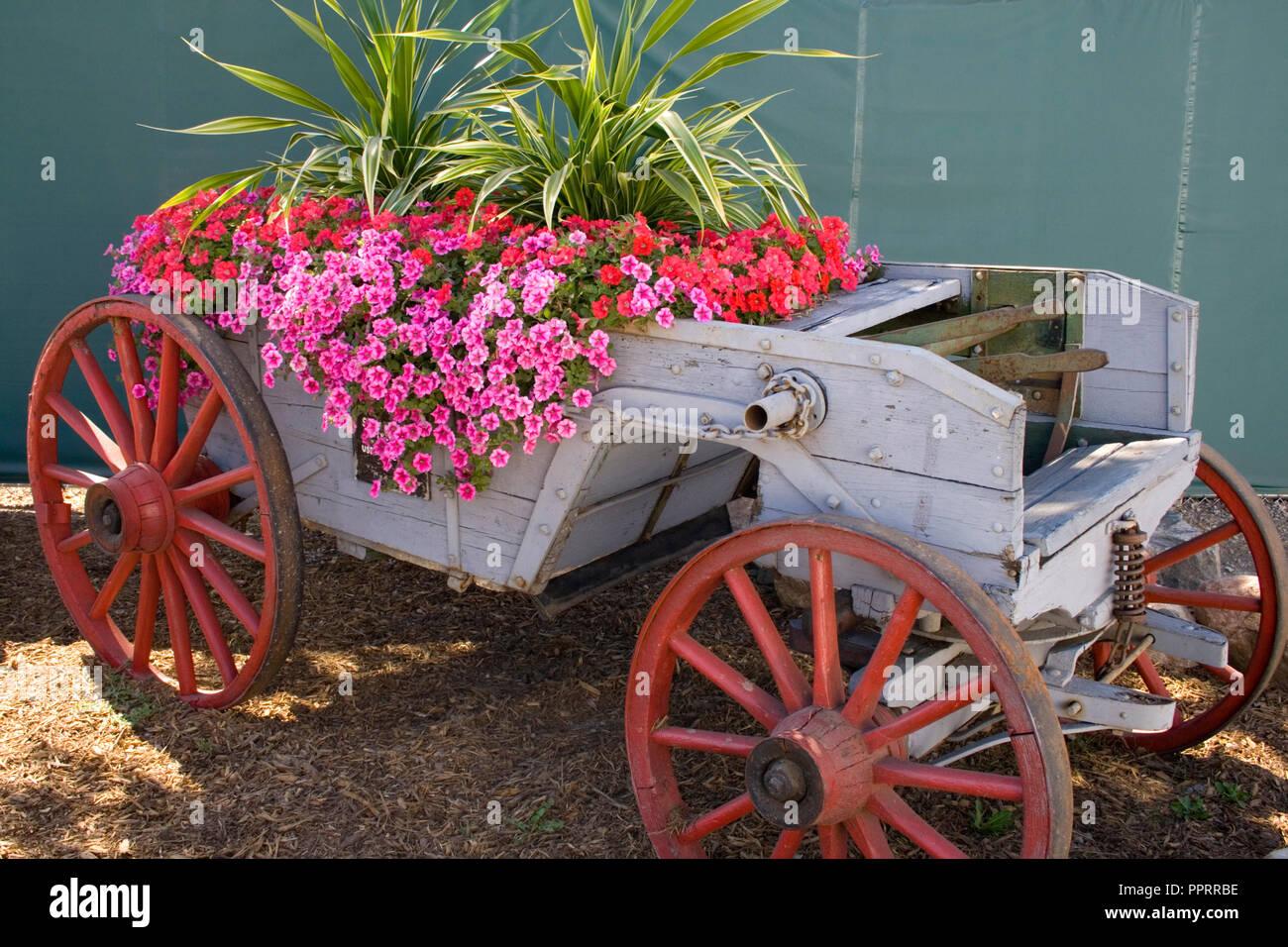 Antique Wagon Stock Photos Amp Antique Wagon Stock Images