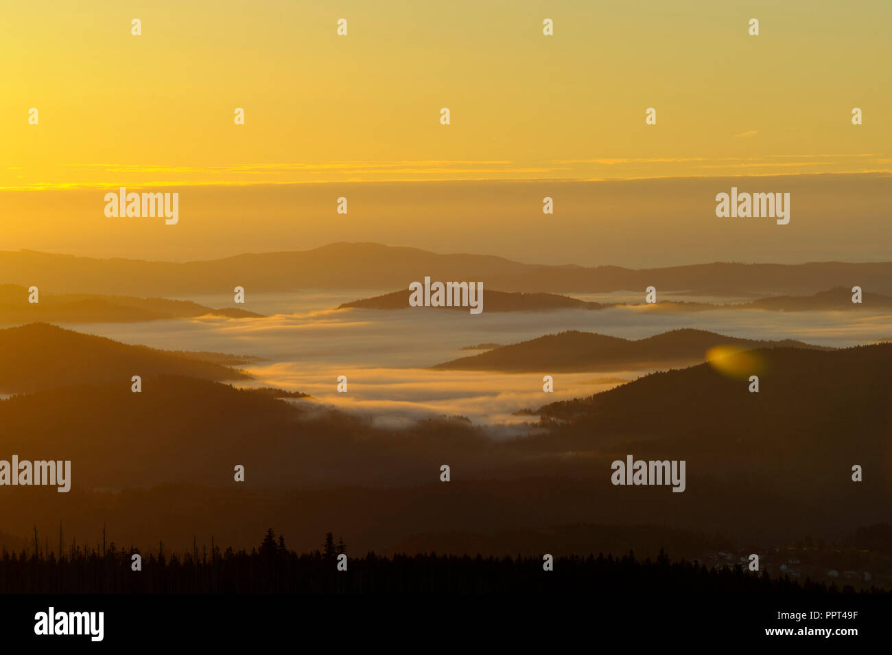 Lusen, october, Bavarian Forest National Park, Germany Stock Photo