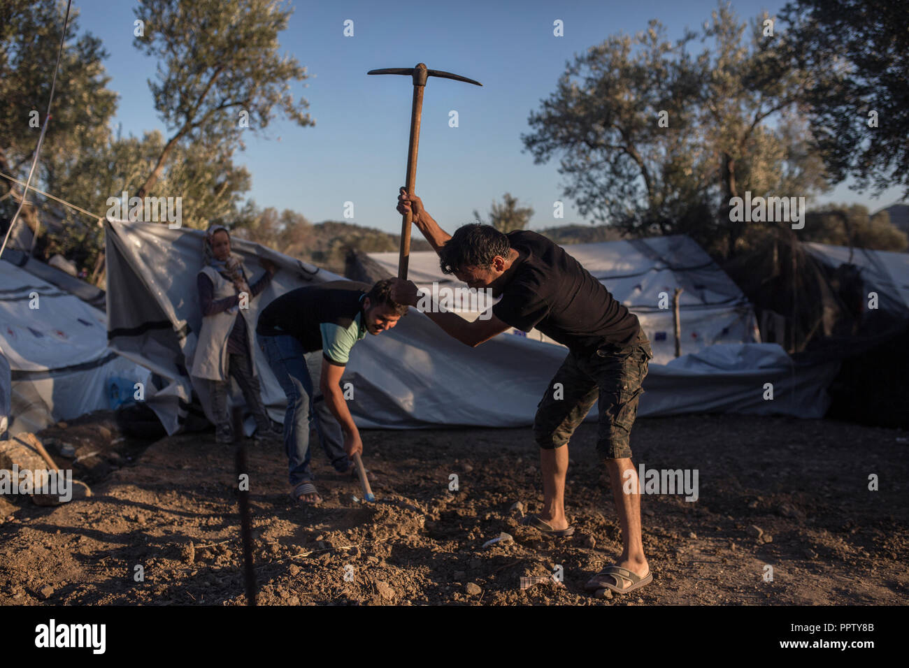 Moira, Greece. 24th Sep, 2018. Refugees and migrants work the ground to pitch a tent in a temporary camp next to the refugee camp of Moria. (to dpa 'Moria: The camp of shame on the island of Lesbos' of 28.09.2018) Credit: Socrates Baltagiannis/dpa/Alamy Live News - Stock Image