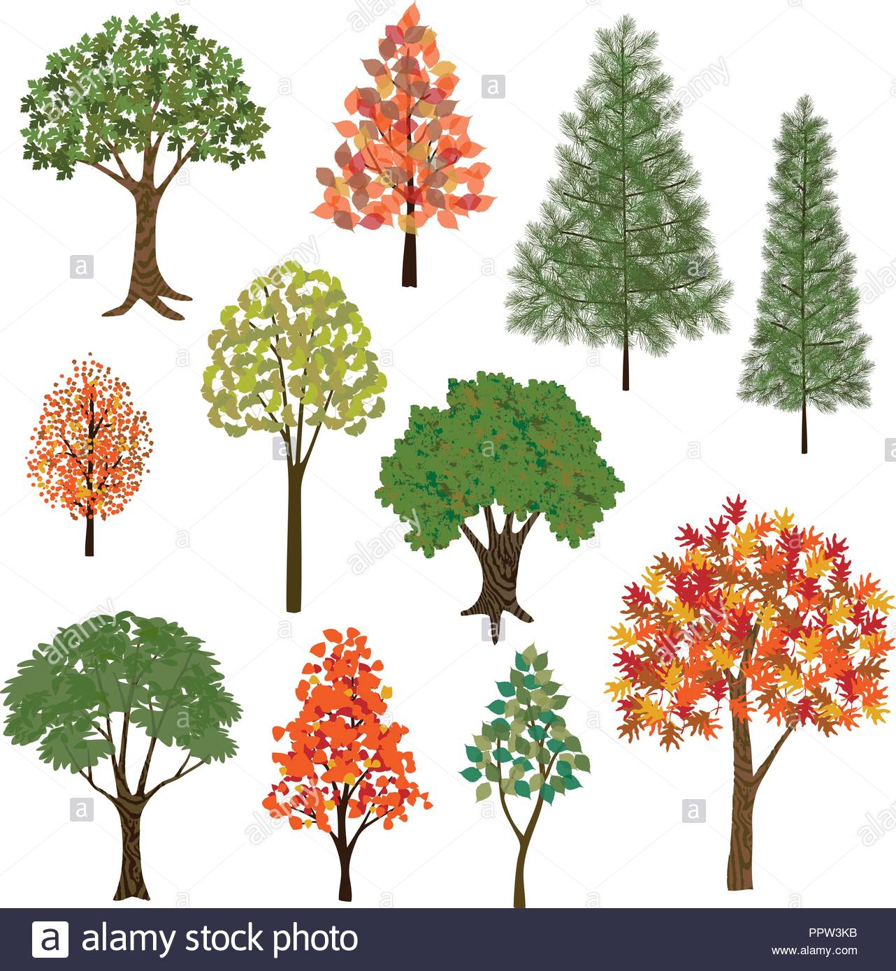 Hand Drawn Trees Vector Clipart Stock Vector Art Illustration