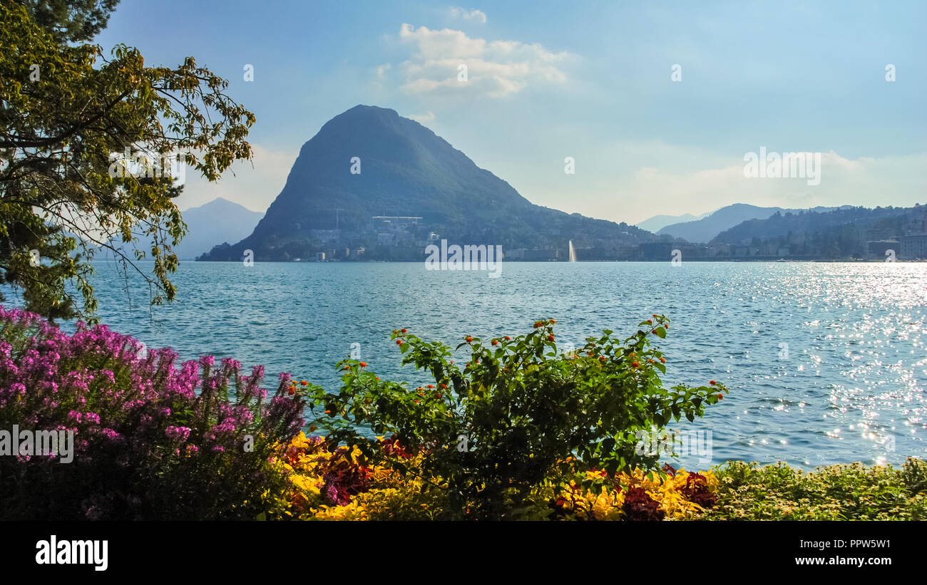 Nice, colorful flowers at the boulevard of Lake Lugano (Ticino, Switzerland) on a sunny, late september day. Stock Photo