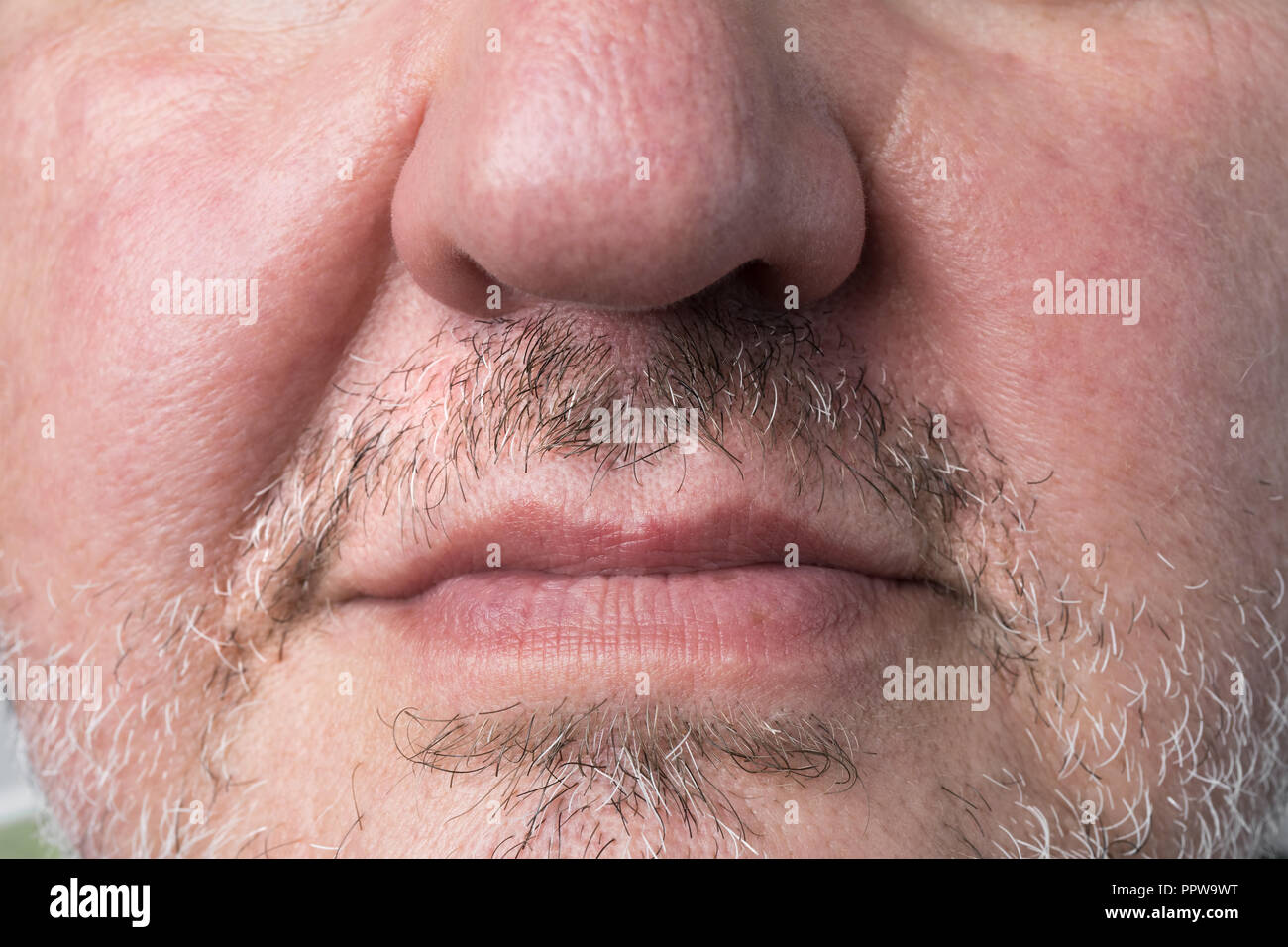 Man with natural grown moustache and facial hair for november cancer awareness month. - Stock Image
