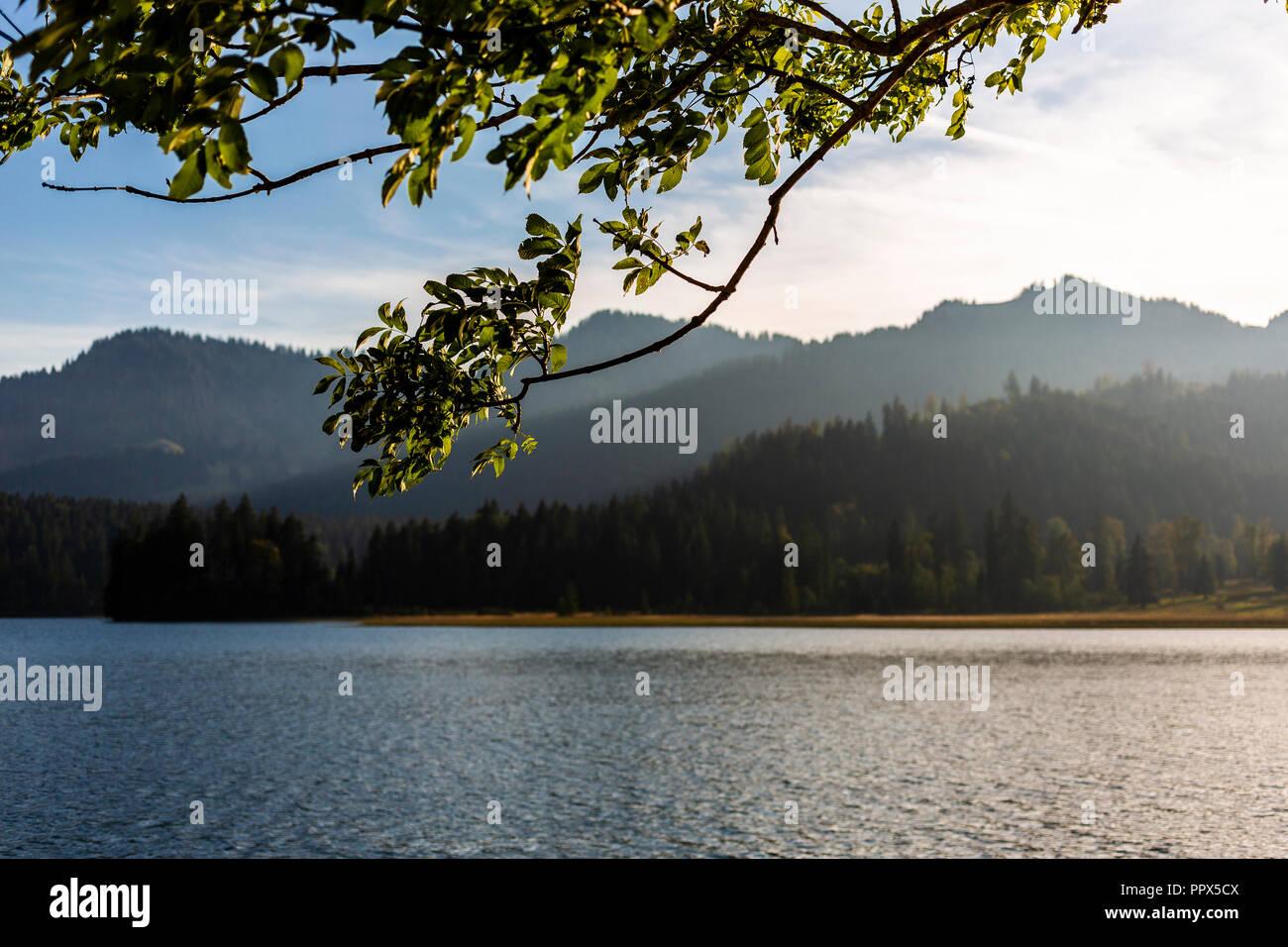 Der idyllische Schliersee in Bayern, Deutschland, Germany, in der Abendstimmung, untergehende Sonne - Stock Image