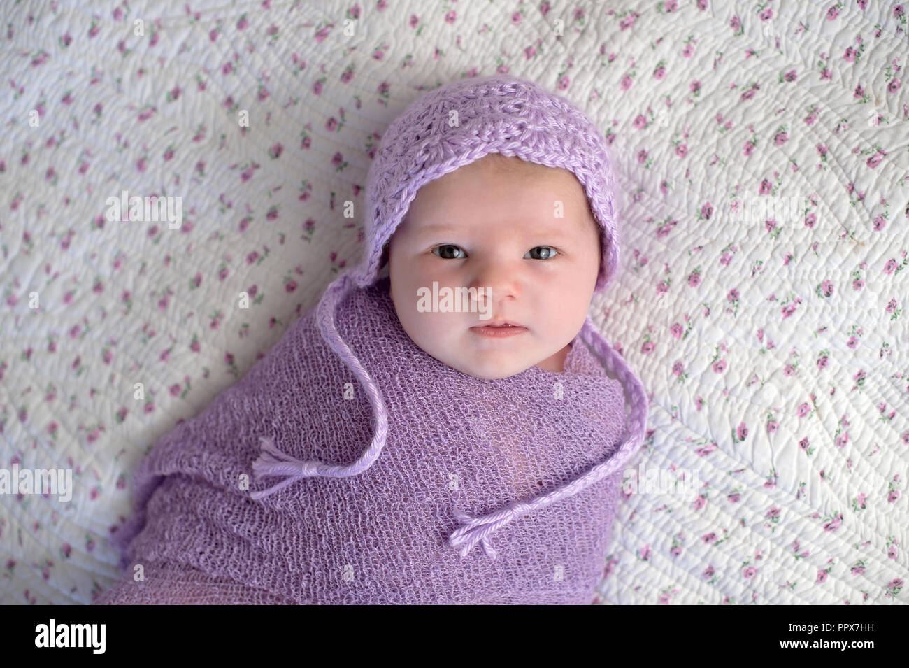 One month old baby girl wearing a bonnet and swaddled in a lavender purple  wrap. d0b40fd0e3a