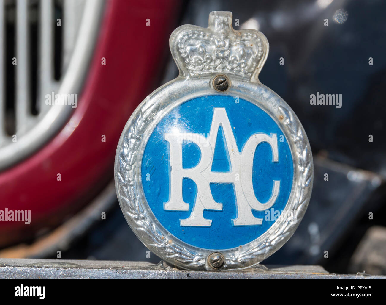 Vintage RAC badge on the front of an old Austin car from the 1930s. Royal Automobile Club badge in the UK.. - Stock Image